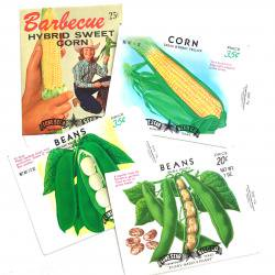 1970'sデッドストック/USAシードパケットセット【4枚】