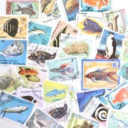世界の魚の使用済み切手10枚