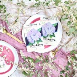 USA/1970'sデッドストック/フラワーシードパケットセット/SweetPea