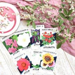 USA/1970'sデッドストック/フラワーシードパケットセット/Chrysanthemum