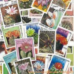サボテンの使用済み切手10枚