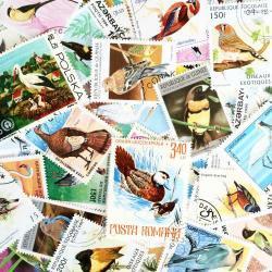 世界のバード/使用済み切手10枚