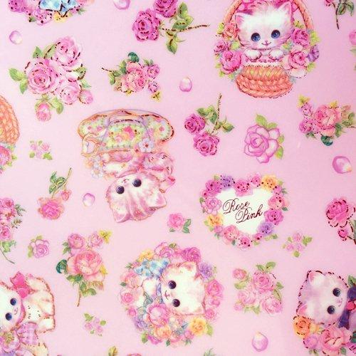 Clothes-Pin(クローズピン) 飴ノ森ふみかシリーズ A4サイズ クリアファイルの商品写真7