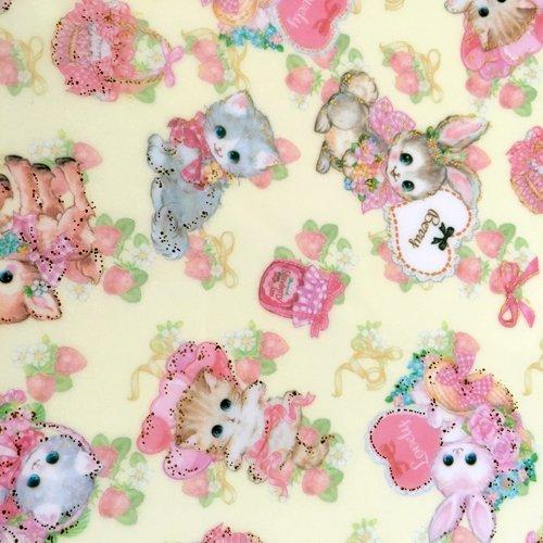 Clothes-Pin(クローズピン) 飴ノ森ふみかシリーズ A4サイズ クリアファイルの商品写真9