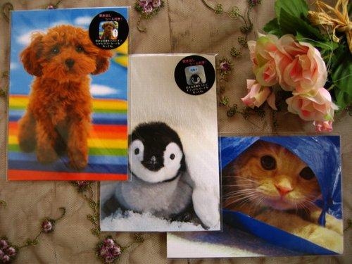 クローズピン 吹き出しシール付きポストカードの商品写真です
