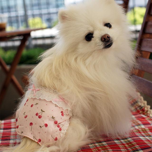 華集 Lulu doll チェリーボンボンおパンツの商品写真3