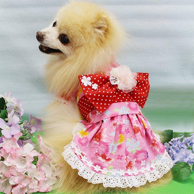 華集 Lulu doll 乙女の出目金ちゃん浴衣の商品写真3
