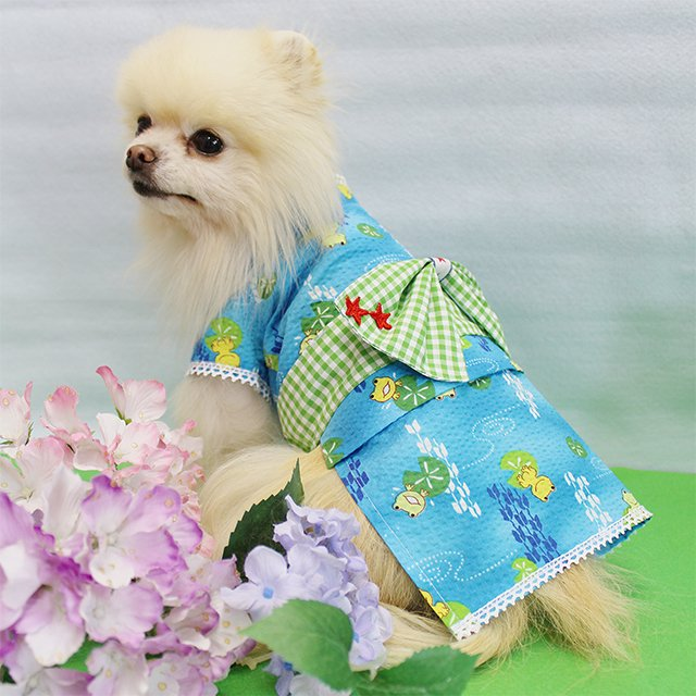 華集 Lulu doll 男子のケロケロ君浴衣の商品写真3