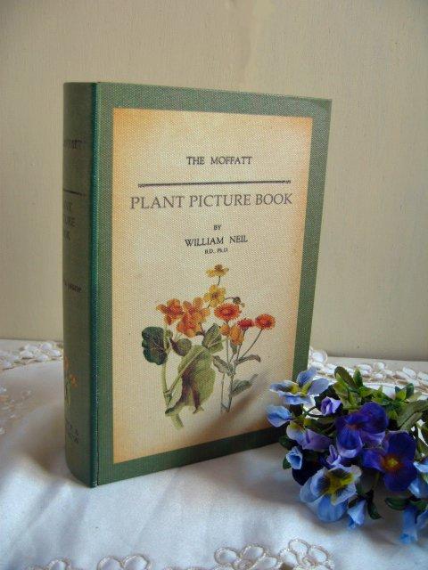 ティアラ 古い本の箱 秘密の引き出しの商品写真2