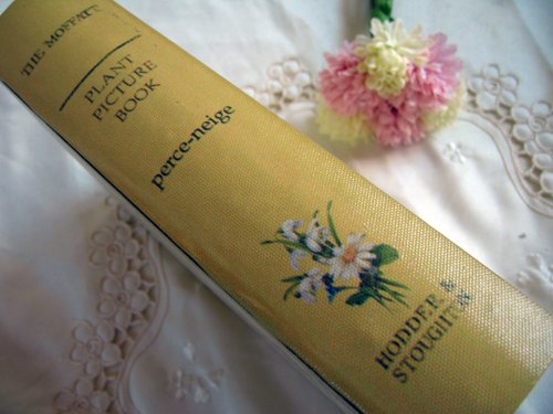 ティアラ 古い本の箱 秘密の引き出しの商品写真11