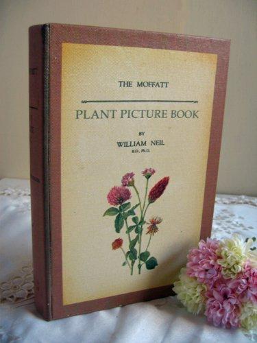ティアラ 古い本の箱 秘密の引き出しの商品写真12