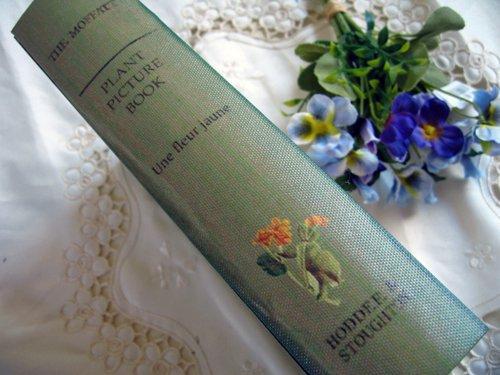 ティアラ 古い本の箱 秘密の引き出しの商品写真6