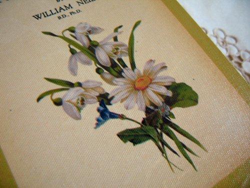 ティアラ 古い本の箱 秘密の引き出しの商品写真9