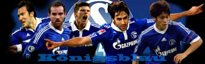 Schalke04 Football Shirt,Soccer Jersey