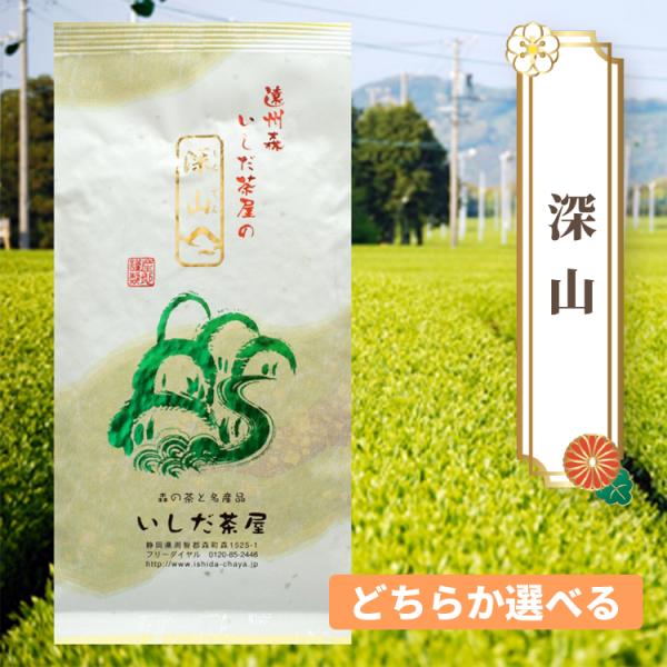 【送料込】 静岡森町 朝採りとうもろこし「甘太郎(約1.5� 5本)と2種から選ぶお茶セット」  [3]