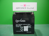 GSyuasa PWL12V24<img class='new_mark_img2' src='https://img.shop-pro.jp/img/new/icons14.gif' style='border:none;display:inline;margin:0px;padding:0px;width:auto;' />