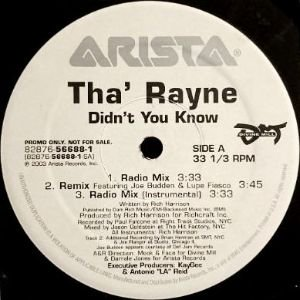 THA' RAYNE - DIDN'T YOU KNOW (12) (PROMO) (VG+)