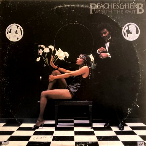 <img class='new_mark_img1' src='https://img.shop-pro.jp/img/new/icons3.gif' style='border:none;display:inline;margin:0px;padding:0px;width:auto;' />PEACHES & HERB - WORTH THE WAIT (LP) (VG+/VG+)