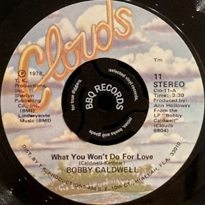 <img class='new_mark_img1' src='https://img.shop-pro.jp/img/new/icons3.gif' style='border:none;display:inline;margin:0px;padding:0px;width:auto;' />BOBBY CALDWELL - WHAT YOU WON'T DO FOR LOVE (7) (EX/VG+)