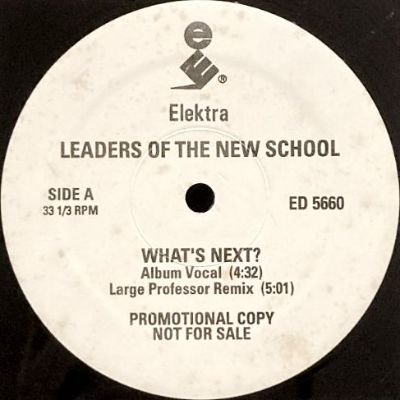 <img class='new_mark_img1' src='https://img.shop-pro.jp/img/new/icons3.gif' style='border:none;display:inline;margin:0px;padding:0px;width:auto;' />LEADERS OF THE NEW SCHOOL - WHAT'S NEXT (12) (PROMO) (EX)