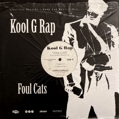 <img class='new_mark_img1' src='https://img.shop-pro.jp/img/new/icons3.gif' style='border:none;display:inline;margin:0px;padding:0px;width:auto;' />KOOL G RAP - FOUL CATS (12) (VG+/VG+)