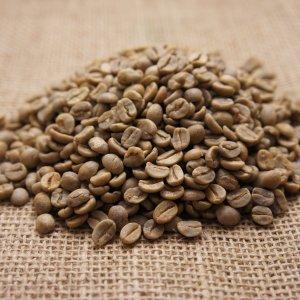 ブラジル100g(生豆)