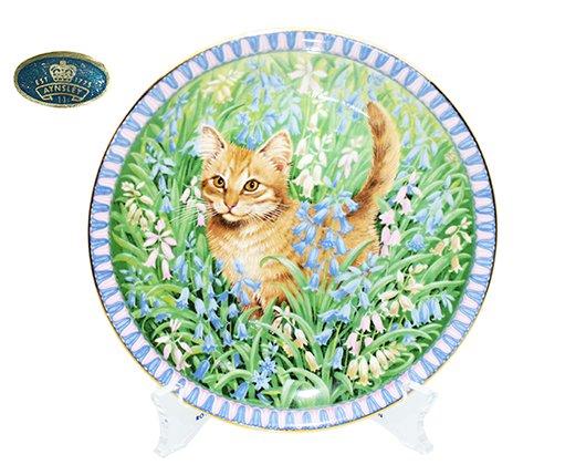 Aynsley エインズレイ キャットプレート3月 Meet My Kittens スピロ 猫の写真
