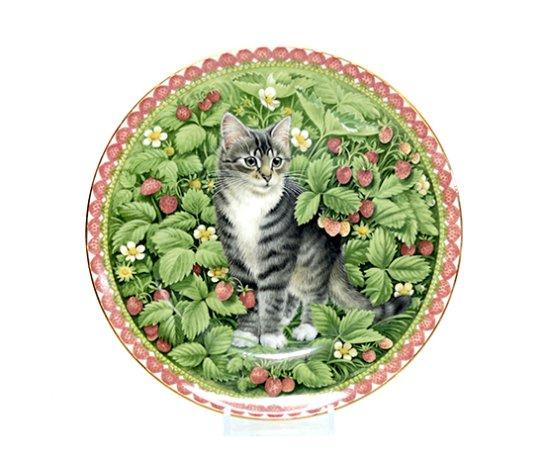エインズレイ/Aynsley Meet My Kittens 7月 ジェマ/Gemma キャットプレートの写真