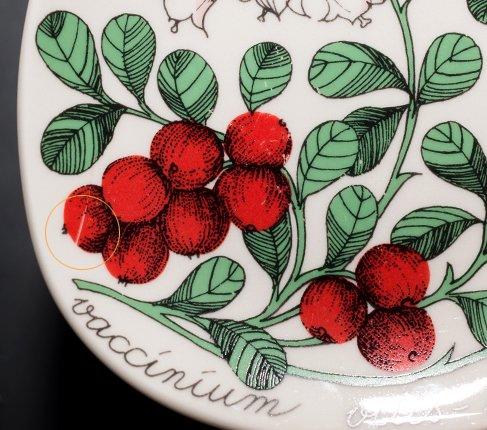 【送料無料】アラビア ボタニカ コケモモ/vaccinium vitis-idaea ウォールプレートの写真No.2
