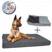 DOG ORTHO(整形外科用ベッド)
