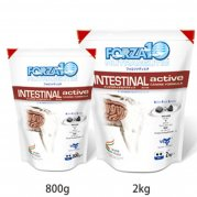 フォルツァ10 インテスティナルアクティブ (消化器ケア療法食)