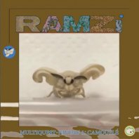 RAMZI / MULTIQUEST NIVEAU 1: CAMOUFLE