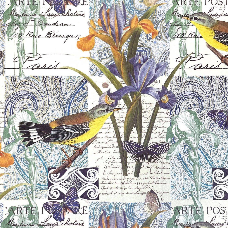 ROSSI-鳥とアヤメ GRサイズ