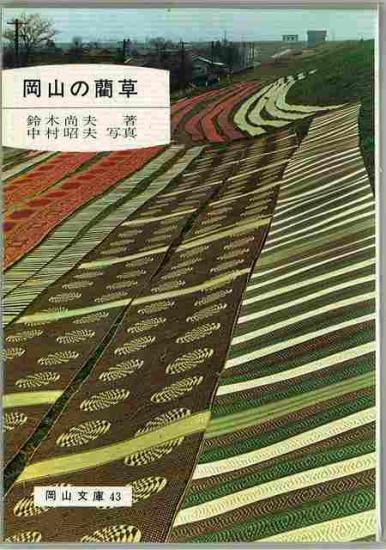 岡山の藺草