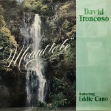 DAVID TRONCOSO FEATURING EDDIE CANO / meant to be