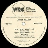 JANICE BULLUCK / dont start a fire