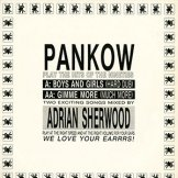 PANKOW / play the hits of the nineties