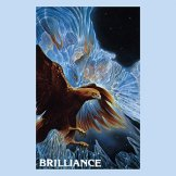 WILLIAM WICHMAN & SUZANNE DOUCET / brilliance