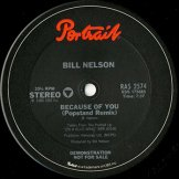 BILL NELSON / because of you
