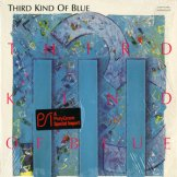 THIRD KIND OF BLUE / third kind of blue