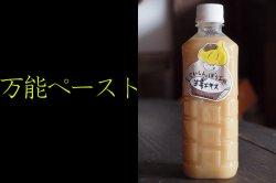生姜果汁90%ペースト500ml 無農薬無添加