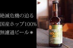 竹田産ホップIBUKIゴールデン・エール330ml