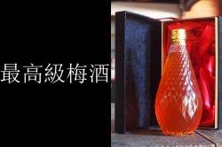 長期熟成梅酒 ビンテージ梅花爛漫 有田焼磁器