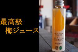 完熟梅ジュース ビブラート(vibrato) 24本