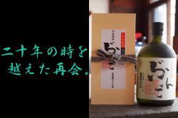 ぶんご 二十年古酒米焼酎 35度 720ml