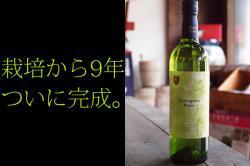 安心院ソーヴィニヨンブラン 辛口白ワイン