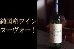 安心院ワイン新酒2019ナイアガラ白