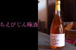 ちえびじん梅酒 720ml 杵築市・中野酒造