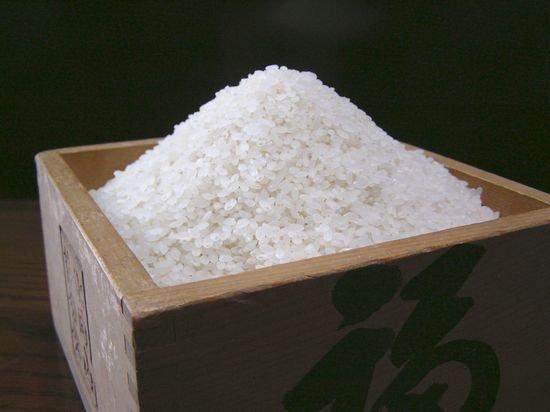 コシヒカリ(はさがけ米)2Kg