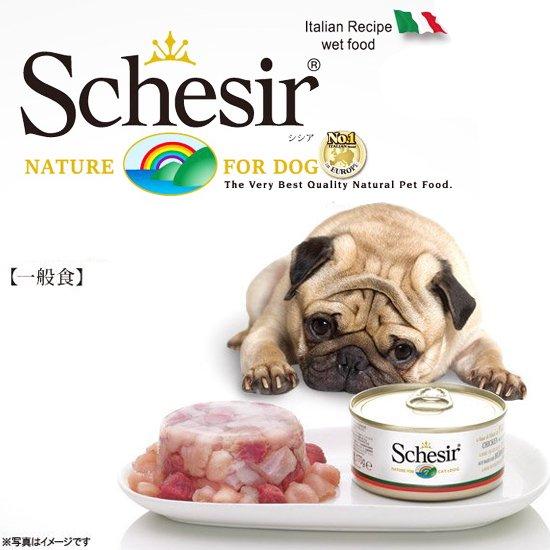 シシア缶詰(Schesir)